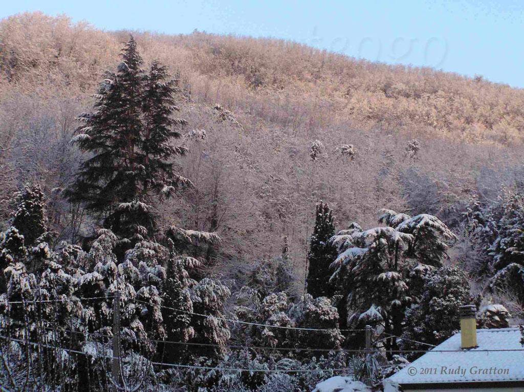 neve dicembre 2005